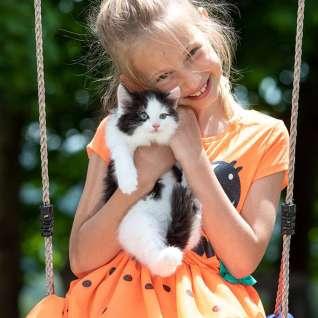 Kind-Schaukel-Katze