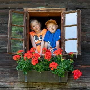 Kinder-Fenster-2