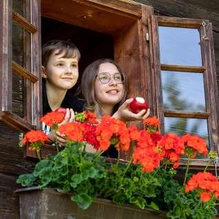 Kinder-Fenster-3
