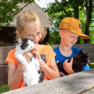 Kinder-mit-Tieren